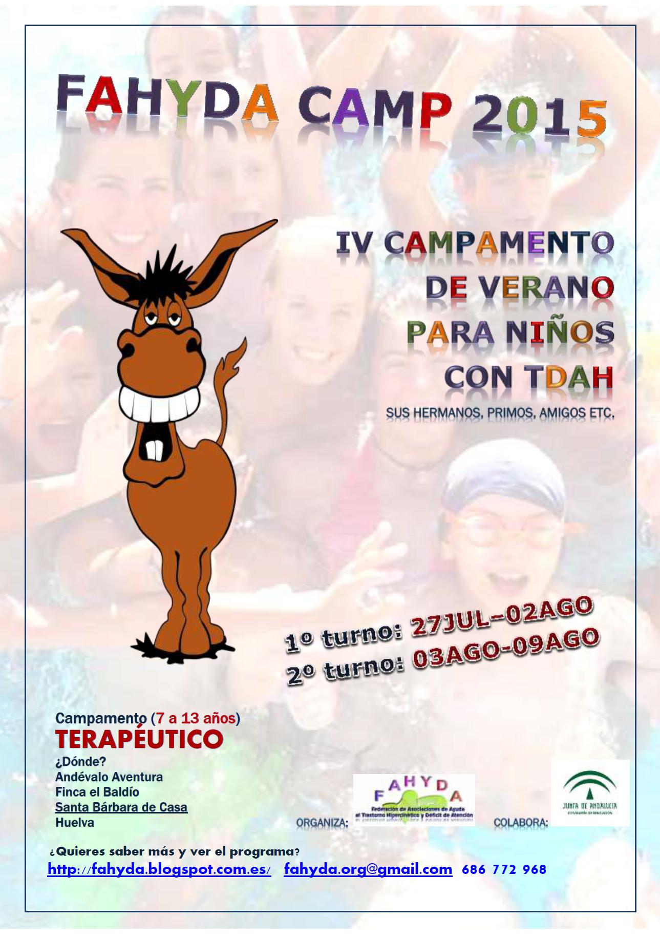 Cartel Campamentos FAHYDA 2015