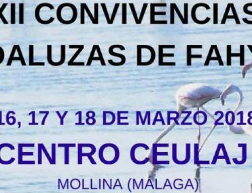 XII CONVIVENCIAS ANDALUZAS DE FAMILIAS